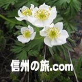 信州の旅.com