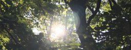 10月1日軽井沢。秋分。次候。蟄虫坏戸。