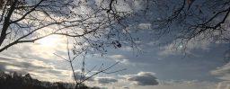 11月14日軽井沢。立冬。次候。地始凍。