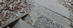 12月17日軽井沢。大雪。末候。鱖魚群。