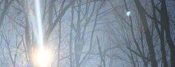 1月26日軽井沢。大寒。次候。水沢腹堅。