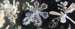 1月27日軽井沢。大寒。次候。水沢腹堅。