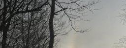 1月28日軽井沢。大寒。次候。水沢腹堅。