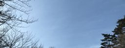 1月31日軽井沢。大寒。末候。鶏始乳。