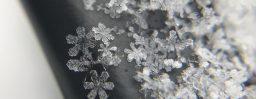 2月2日軽井沢。大寒。鶏始乳。