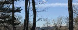 3月2日軽井沢。雨水。草木萠動。