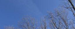 3月3日軽井沢。雨水。草木萠動。